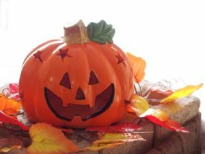 かぼちゃ 皮 栄養