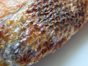 鮭 皮 栄養 1