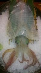 イカ 栄養