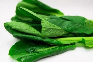 小松菜 栄養 効果